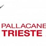 logopalltriestesitoufficiale
